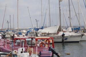 Jaffa remains a popular fishing port.