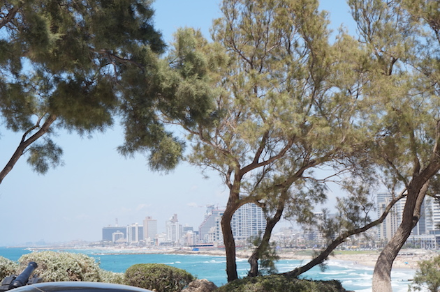 The view of Tel-Aviv from Jaffa.