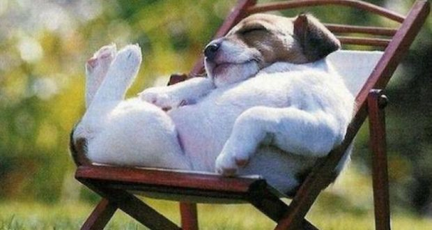 rest sunday
