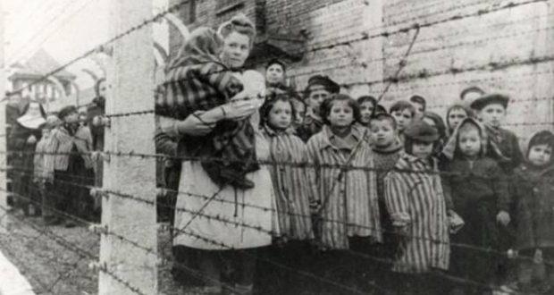 babies auschwitz holocaust