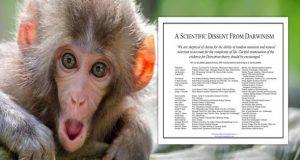 evolution petition