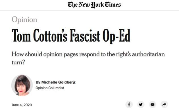 cotton new york times