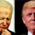 trump polls