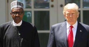 nigerian trump