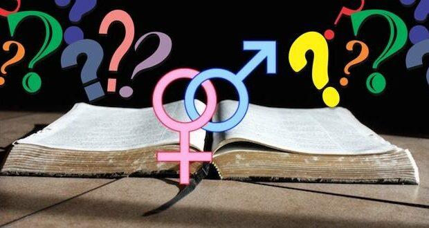 biblical gender
