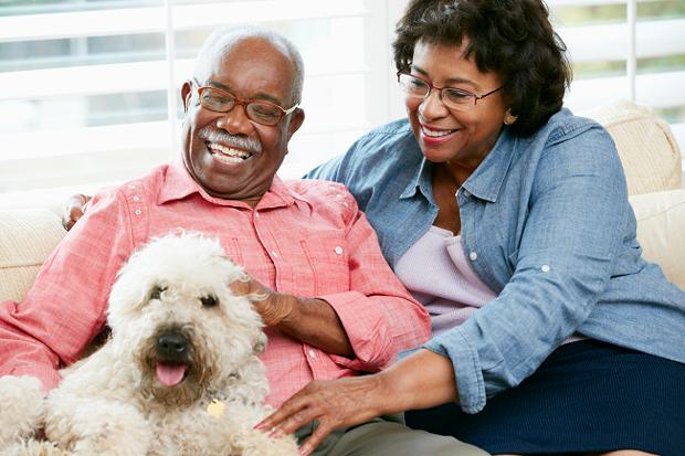 jobs for seniors