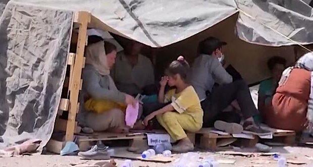 british afghan