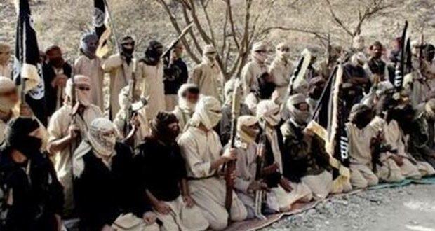 biden al-qaeda